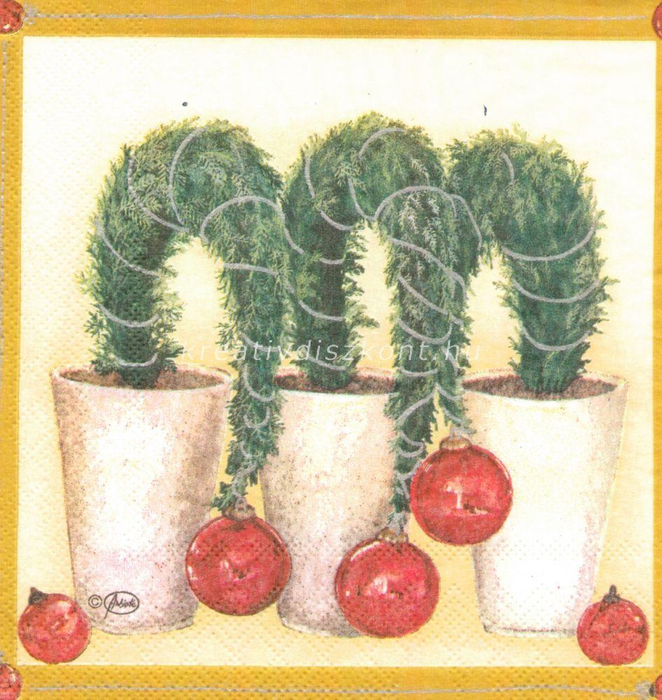 Szalvéta, karácsonyi növény cserépben, dísszel