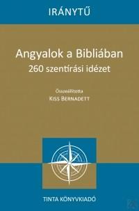 Papir_penz_Buvesz_trukk