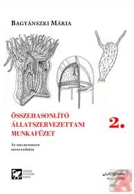 Dizajn_fa_hatasu_munlifunkcios_ora_teglatest_alak