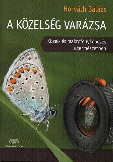 VARAZSLATOS_DISZEK_KARACSONYRA
