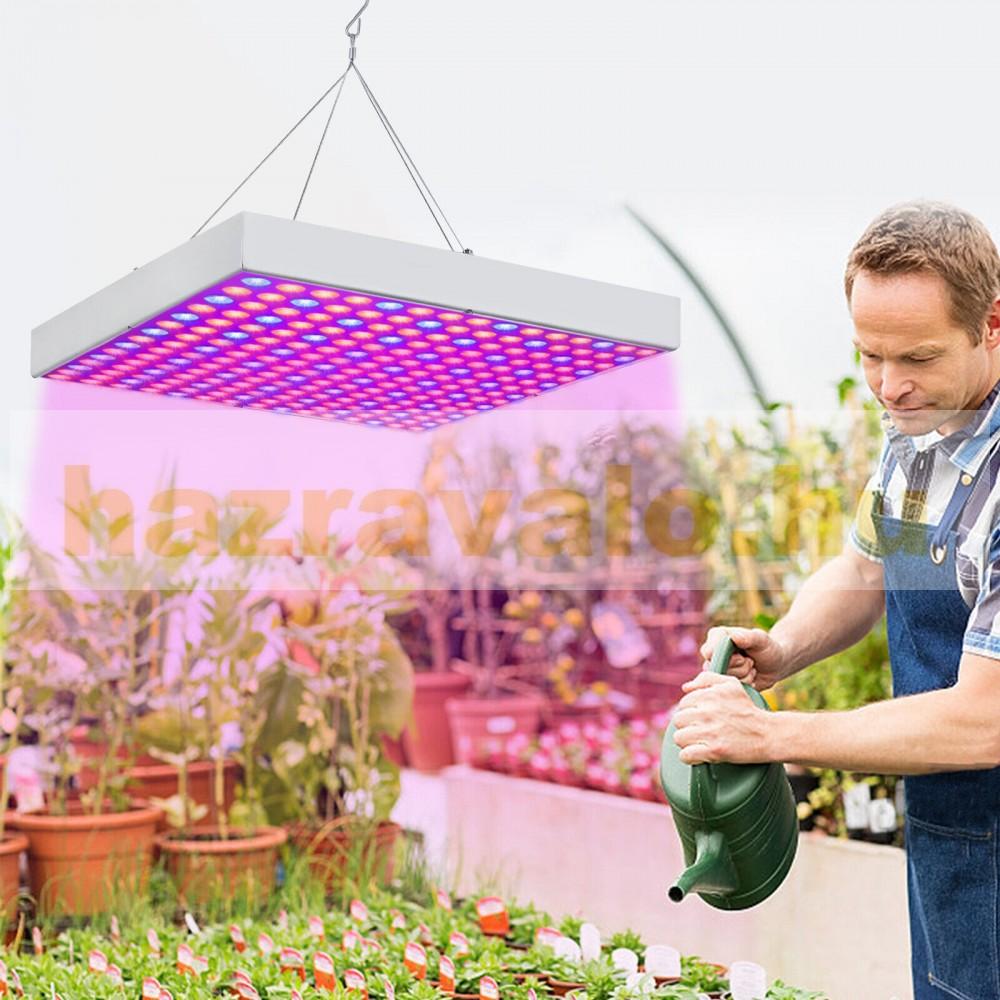 Növénynevelő led lámpa készlet 2x45W