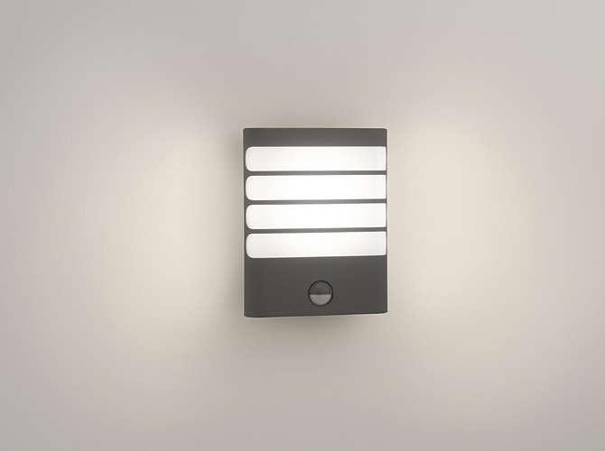 Philips 172749316 Raccoon kültéri fali lámpa (antracit szürke) 1x3W mozgásérzékelős