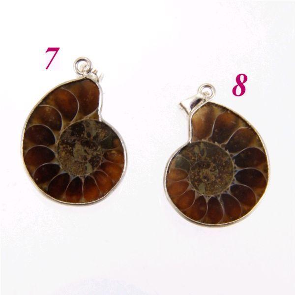 Ammonitesz_fosszilia_medal_178