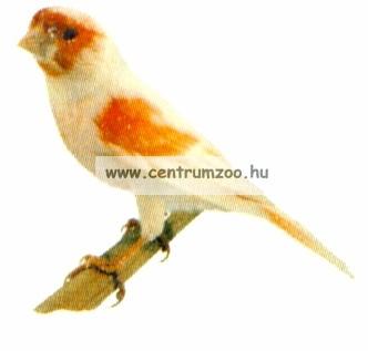 Ferplast madárfészek 11,5x10,6x8,5cm  (PA4452)