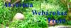Akvarista Webáruház