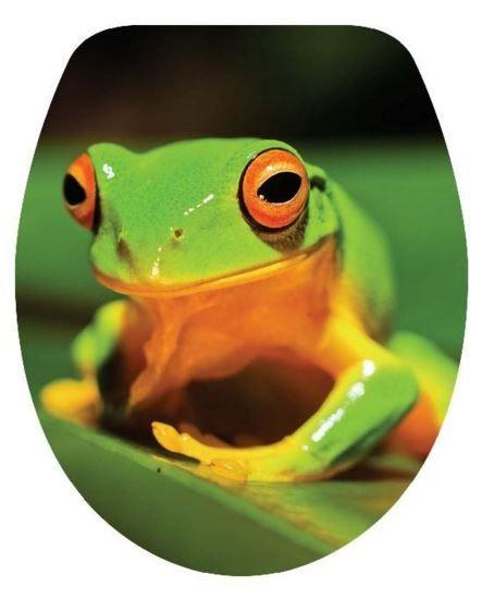 DUROPLAST BRH 140 BÉKA / FROG antibakteriális WC ülőke, békás (színes, mintás, képes, fényképes) rozsdamentes zsanérral, 3 oldalon nyomtatott (tetőkülső+tetőbelső+ülőrész)