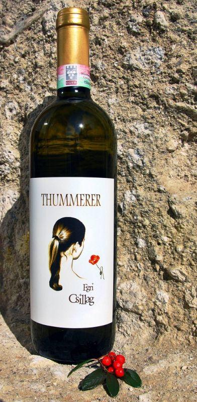 Thummerer - Egri Csillag 2012.